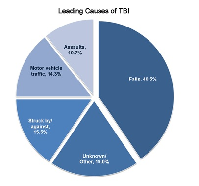 Graph showing the leading causes of TBI